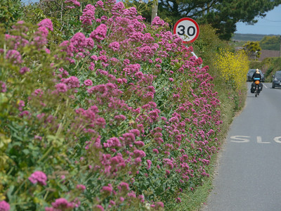 © RobAng 2011, Velotour GB (Dorset-Devon-Cornwall), Cornwall, Saint Ervan, St. Eval, 52 m