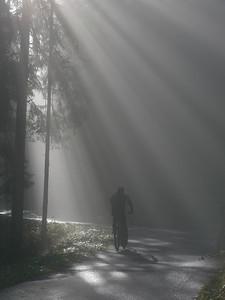 @RobAng 2012 / Aufstieg zum Rinderweidhorn, südöstl. von Pfäffikon (SZ), Kanton Schwyz, CH, Schweiz/Switzerland,  25.10.2012 10:46:32