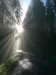 @RobAng 2012 / Aufstieg zum Rinderweidhorn, südöstl. von Pfäffikon (SZ), Kanton Schwyz, CH, Schweiz/Switzerland,  25.10.2012 10:47:31