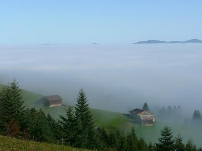 @RobAng 2012 / Aufstieg zum Rinderweidhorn, südöstl. von Pfäffikon (SZ), Kanton Schwyz, CH, Schweiz/Switzerland,  25.10.2012 10:57:16