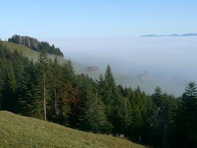 @RobAng 2012 / Aufstieg zum Rinderweidhorn, südöstl. von Pfäffikon (SZ), Kanton Schwyz, CH, Schweiz/Switzerland,  25.10.2012 10:54:33