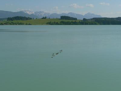 Illach, Lechbruck, 698.37 m, Deutschland /  RobAng, 2012/05/26 17:08:17