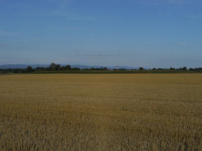 @RobAng, Aug 2013 / Pittrich, Kirchroth, Bayern, DEU, Deutschland, 317 m ü/M, 15.08.2013 18:27:19
