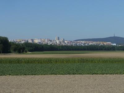 @ RobAng, Aug 2013 / Wolfsthal, Wolfsthal, Niederösterreich, AUT, Österreich, 138 m ü/M, 02/08/2013 16:38:15