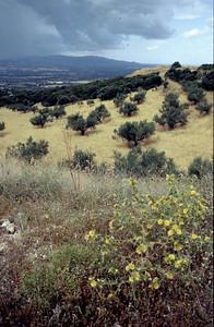 @RobAng 2001, Velotour Peloponnes (GR). Tag1, Rio-Patras-Kataraktis-Kalavrita-Zachlorou