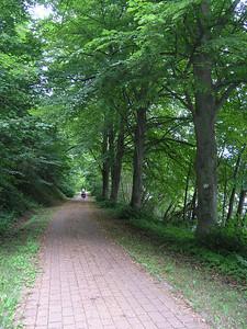 ©RobAng 2005, Deutschland -   Baltikum Tour per Velo Berlin-Gdansk-Kaliningrad-Tallinn