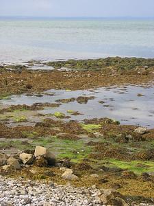 2004/08/05 16:59:21 /  ©RobAng /  Ireland - Irland / Co. Clare / Ballyvaughan