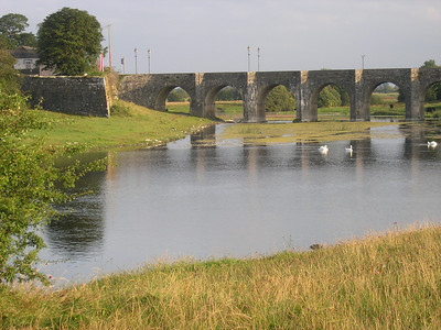 2004/08/05 07:41:51 /  ©RobAng /  Ireland - Irland / Co Offaly / Shannonbridge