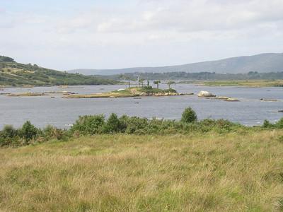 2004/08/07 11:50:42 /  ©RobAng /  Ireland - Irland / Co. Galway / Region Connemara