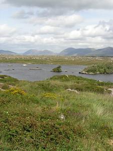2004/08/07 12:29:47 /  ©RobAng /  Ireland - Irland / Co. Galway / Region Connemara