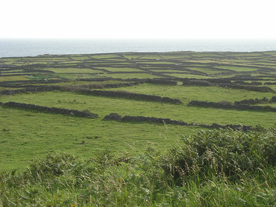 2004/08/07 08:41:31 /  ©RobAng /  Ireland - Irland / Aran Islands - Co. Galway / Inishmore