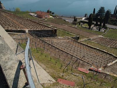Ostern 09 - per Velo rund um den Genfersee und via Bonneville nach Annecy / Aufnahmeort  Chardonne (416.3 m), Chardonne, Schweiz /  ©  Rob Tani