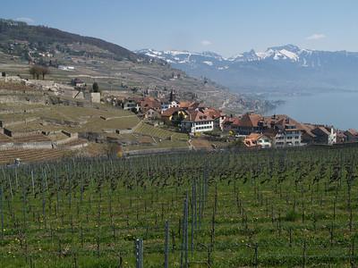 Ostern 09 - per Velo rund um den Genfersee und via Bonneville nach Annecy / Aufnahmeort  Rivaz (465 m), Lauvaux, Schweiz /  ©  Rob Tan