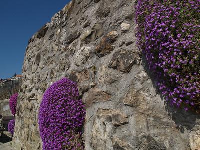 Ostern 09 - per Velo rund um den Genfersee und via Bonneville nach Annecy / Aufnahmeort  Saint-Saphorin (Lavaux) (505.9 m), St-Saphorin (Lavaux), Schweiz /  ©  Rob Tani