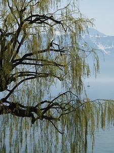 Ostern 09 - per Velo rund um den Genfersee und via Bonneville nach Annecy / Aufnahmeort  Le Châtelard (387.5 m), Grandvaux, Schweiz /  ©  Rob Tani