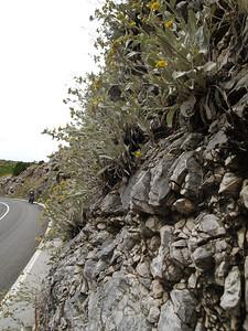 2006/07/04 12:31:47 /  ©RobAng /  Croatia - Kroatien /
