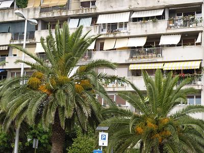 2006/07/12 14:27:29 /  ©RobAng /  Croatia - Kroatien / Zadar