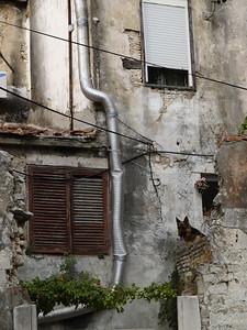 2006/07/12 18:11:42 /  ©RobAng /  Croatia - Kroatien / Zadar
