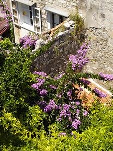 2006/07/05 12:35:43 /  ©RobAng /  Croatia - Kroatien / Dubrovnik