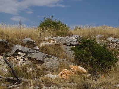 2006/07/08 15:49:11 /  ©RobAng /  Croatia - Kroatien /