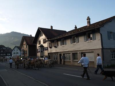 ©RobAng 2009/05/23 07:10:15, Euthal, 894 m // Velotour  Auffahrt 09 - Türlersee-Aegerisee-Raten-Sihlsee-Sattelegg-Wäggitalersee