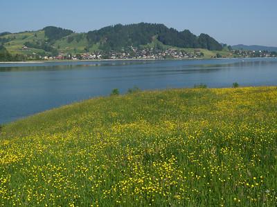 ©RobAng 2009/05/23 09:21:35, Euthal, 891.9 m // Velotour  Auffahrt 09 - Türlersee-Aegerisee-Raten-Sihlsee-Sattelegg-Wäggitalersee