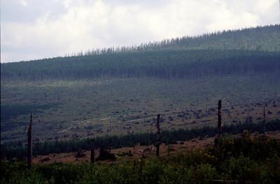 RobAng 1989