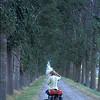 @RobAng 1991 - Normandie (F) by bicycle