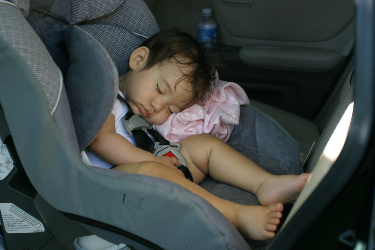 Annie just needed some good sleep in the car.