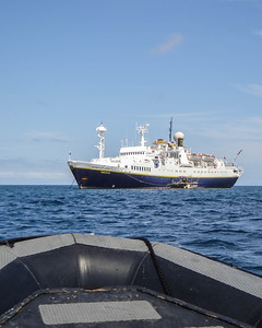 Shot of the National Geographic Endeavour taken from the zodiac