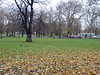 Clapham Common 1