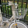 Velib in the wild 2009-09-20_16-05-54