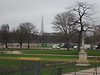 Tour Eiffel over the Jardin des Tuileries<br /> Paris - 2013-01-09 at 11-26-32