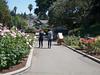 Oakland Rose Garden 2013-05-10 at 14-36-15