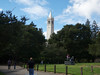 Faculty Glade and Sather Tower<br /> Fall Free for All 2013-09-29 at 14-56-48