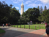 Faculty Glade and Sather Tower<br /> Fall Free for All 2013-09-29 at 14-58-32
