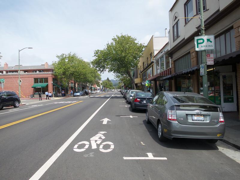 Parking T's and Bike Lane on Piedmont Av<br /> Piedmont Av 2014-04-24 at 13-27-37