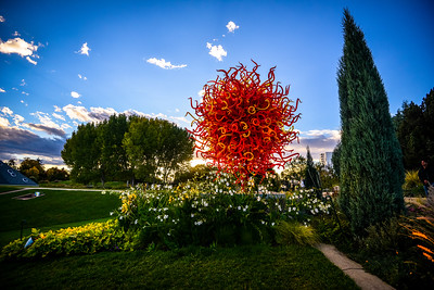 23: Chihuly