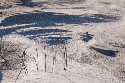 Snowstorm in a Sand Dune