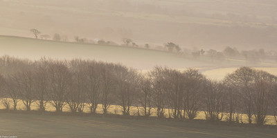 Fields At Sunrise