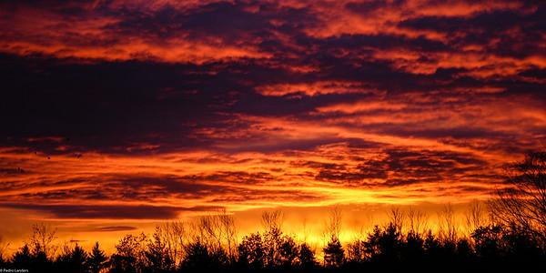 Brandy Brook Sunset