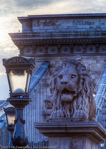 Lion guarding the Pest side of the Chain Bridge