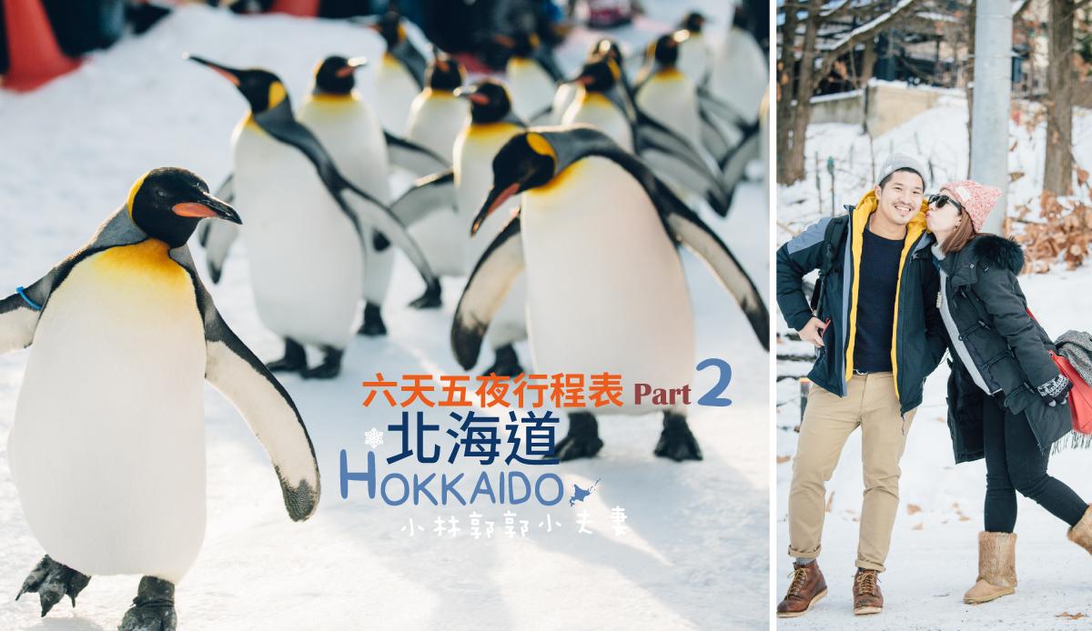 冬天北海道不開車自由行行程表(下):旭山動物園+函館必去必吃一日遊