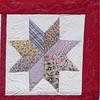"""2010 Quilting Fundraiser: Quilt P1040169. 49"""" x 63"""" (adult lap quilt) $200 DETAIL"""