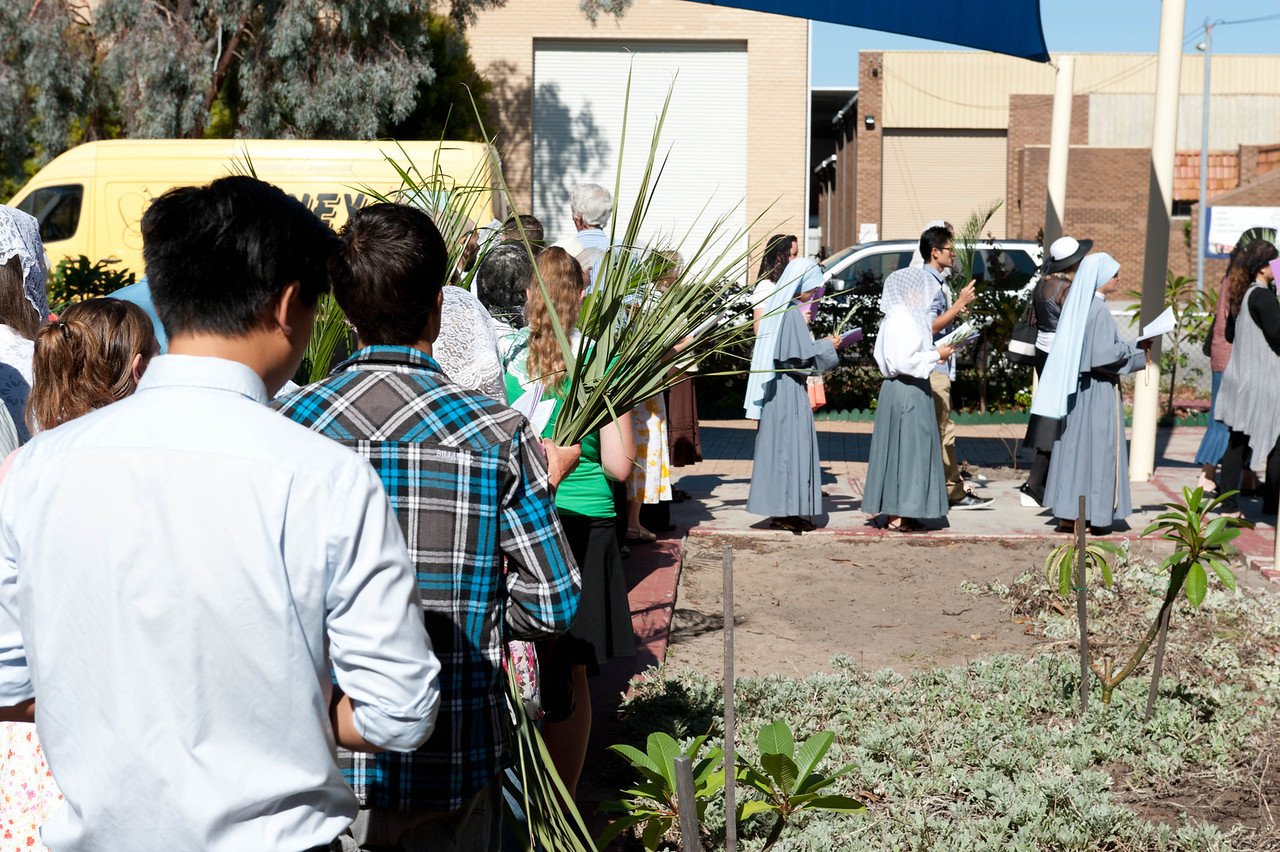 Palm Sunday - procession