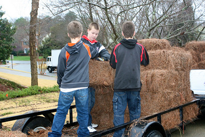 Scouts Delivering Pinestraw
