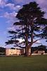 Maidstone Castle I think