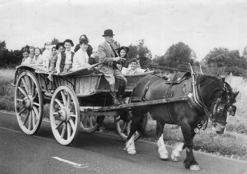 <font size=3><u> - Benson Free Church Outing - </u></font> (BS1011)  Granny Aldridges Sunday School outing – August 1951.  They went to an apple orchard in Brightwell-cum-Sotwell for a picnic.  Children from left:- Bill Marks, Mary Passey, Daphne Passey, (unknown, with face mask), Eileen Passey,  Alfie Gurney, (unknown boy),  David Hill,  behind him almost concealed, Jean Harber,  (little boy (?) with white headgear unknown), Elizabeth Spiers just to left of Ken,  Lenny Vaughan – almost concealed under Ken Passey's left arm,  extreme right Rita Mooring