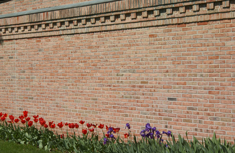All the flowers seemed to be open at once to greet the Bäretswil Choir!
