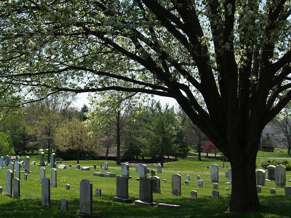 Scenes around Salford Menno - the church cemetery